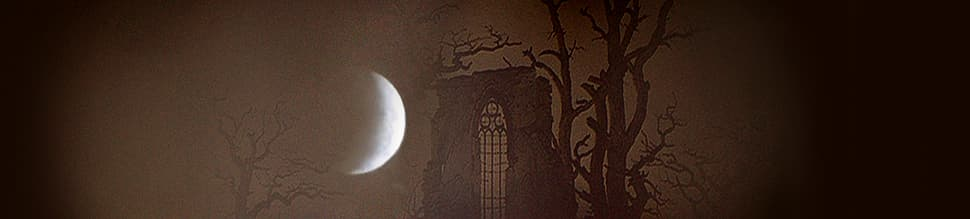 Moonlit landscape with crescent moon and old Gothic ruin